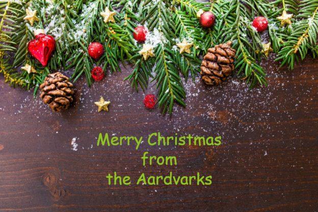 Aardvark Marketing Consultants Ltd | Merry Christmas from the Aardvarks!
