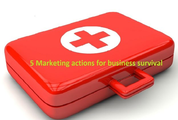 Aardvark Marketing Consultants | 5 marketing actions for business survival