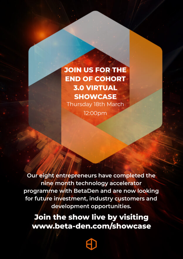 Aardvark Marketing Consultants | BetaDen Cohort 3 showcase invitation